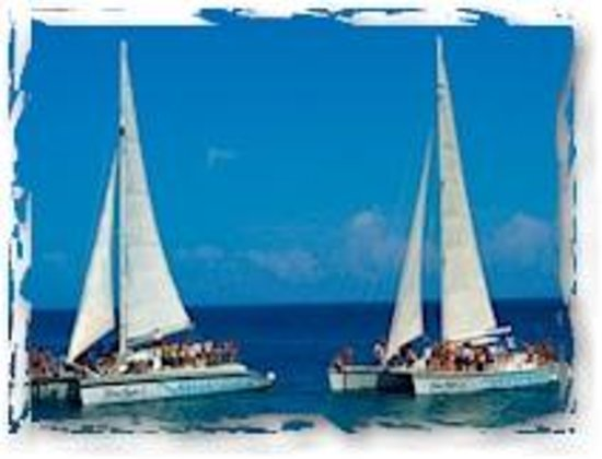 Freestyle Catamarans Tour