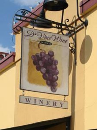 D'Vine Wine Photo