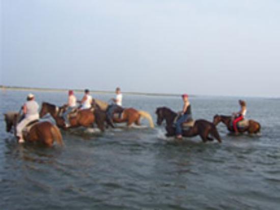 Foto de Outer Banks Riding Stables