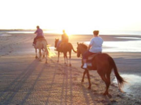 Outer Banks Riding Stables ภาพถ่าย