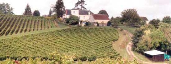 Experience Paris - Champagne Region Tours