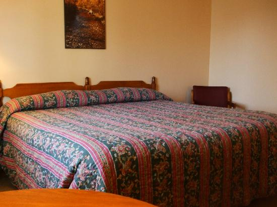 Hotel Terrace and Restaurant: King-bedded room