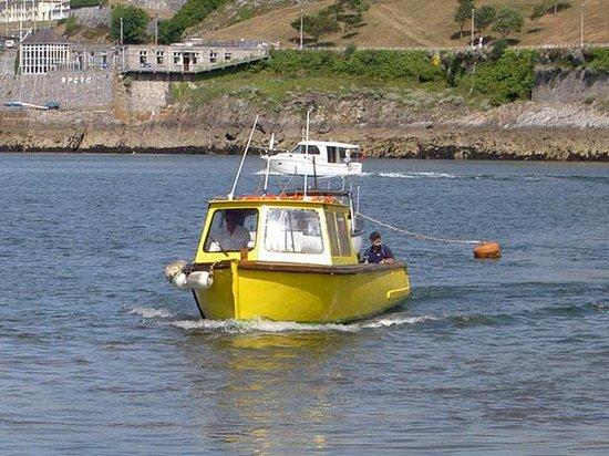 Mount Batten Ferry: Ferry - Copper