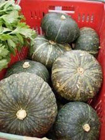 Oratia Farmers Market