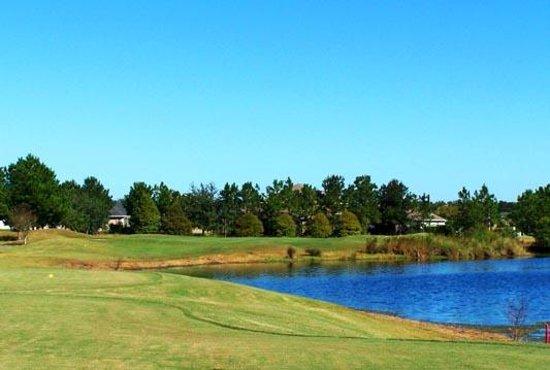 Plantation Palms Golf Club Reviews - Land O Lakes, FL ...