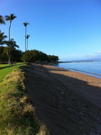 Maui Sunset Condos: Beach great for walks