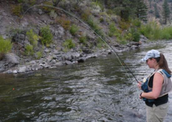 tahoe fly fishing outfitters, south lake tahoe, ca - picture of, Fly Fishing Bait