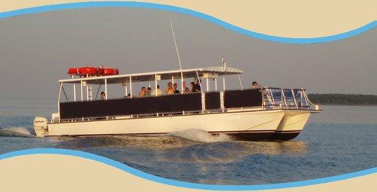 Tavernier Dolphin Cruises