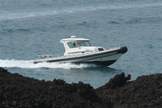 Lava Roy's Ocean Adventure Tours