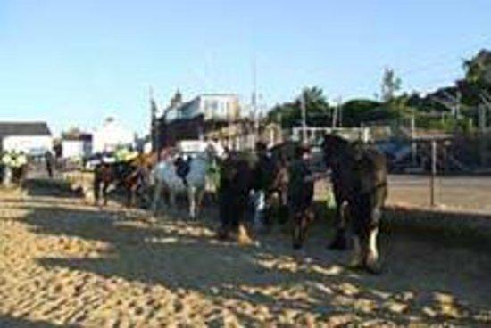 Belfairs Riding School: Beach ride, Leigh on Sea, 2009