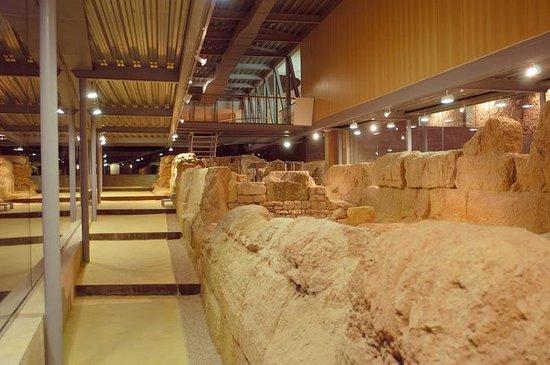 Museo de la Muralla Púnica