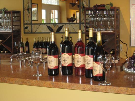 Casa Abril Vineyards & Winery Tasting Room Photo