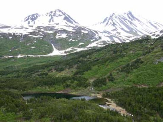 Chugach Backcountry Fishing - Day Trips Image