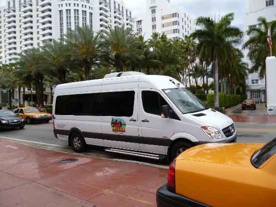 Miami Tour Company : Navette pour les Everglades