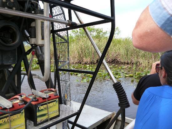 Miami Tour Company : Le vilain alligator
