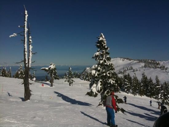 Mount Washington Alpine Resort: The Pacific Ocean seen from the top of Hawk Chair