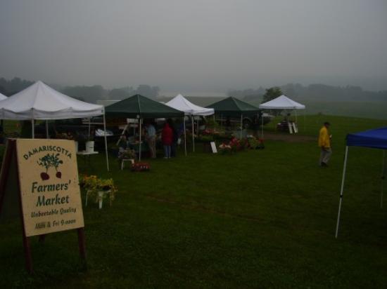 Damariscotta Farmer's Market Resmi