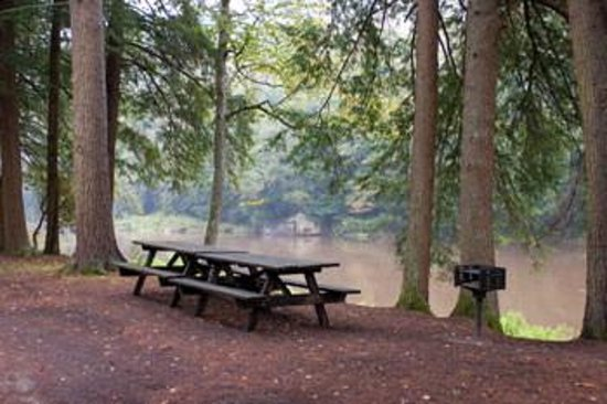 Clear Creek State Park Sigel Pa Top Tips Before You Go