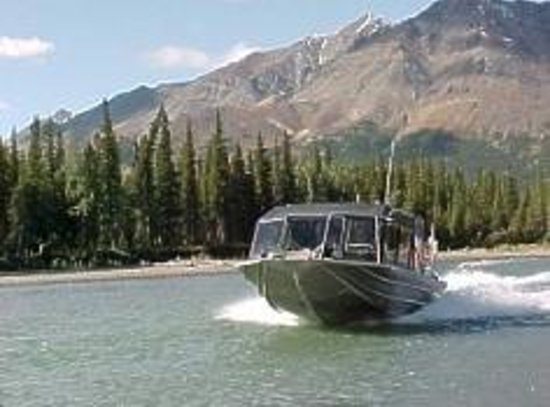 Foto Denali Wilderness Safaris