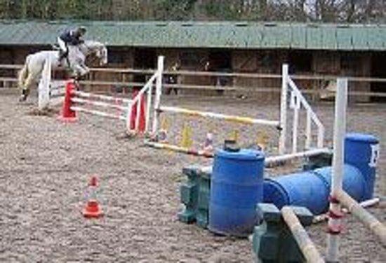 Budleigh Salterton Riding School