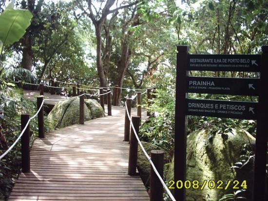 Bombinhas, SC: senderos por la isla porto Belo
