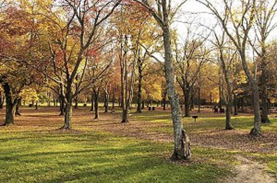 Снимок Lake Fairfax Park