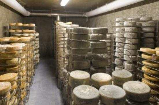 Fifth Town Artisan Cheese Foto