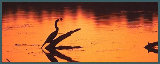 Museum of the Everglades: Sunset in the Everglades