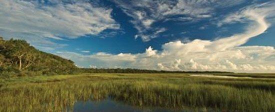 Big Talbot Island State Park Jacksonville Fl Top Tips