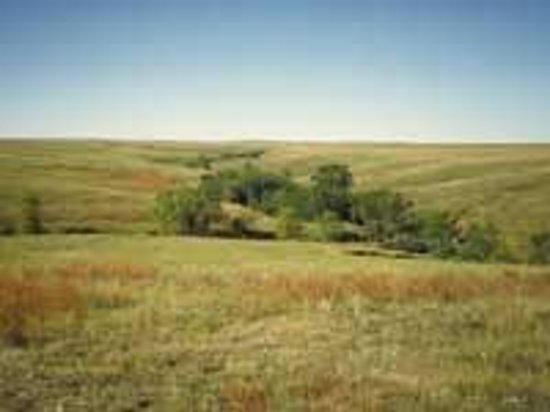 Best Atv 2017 >> Sheyenne National Grasslands (Lisbon, ND): Top Tips Before You Go - TripAdvisor