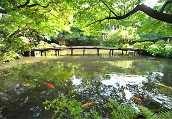 Shizuoka Photo