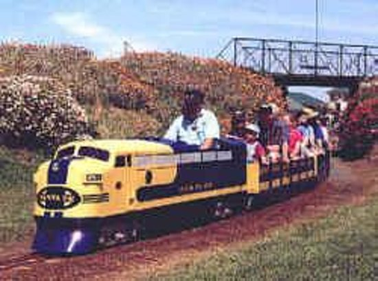 Cobden Miniature Railway: Trains early years