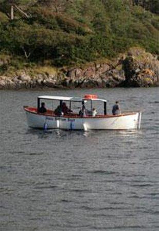 Sealife Glass Bottom Boat Cruises