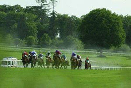 Gowran Park Racecourse Bild