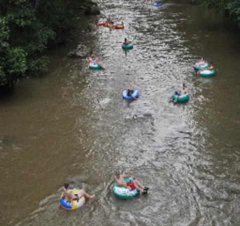 Green River Cove Tubing Bild
