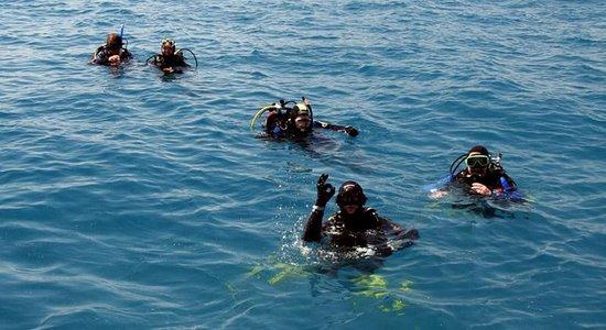 Calypso Diving International