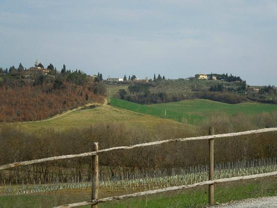 View on surroundings of Tenuta Tizzauli - March 2012