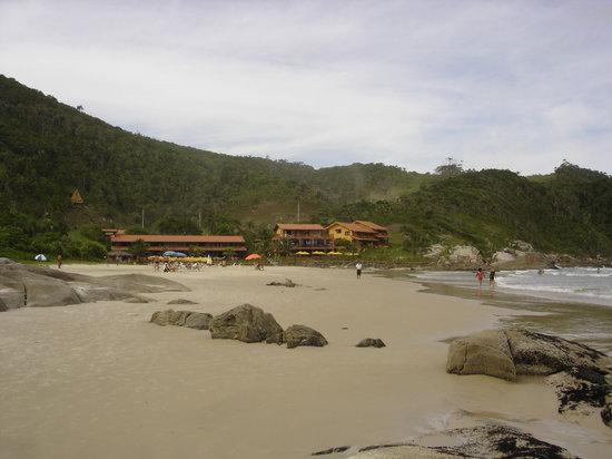Bombinhas, SC: playa mariscal
