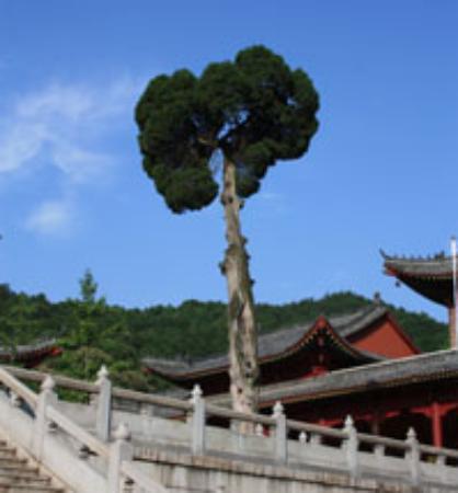 Huangmei County Bild