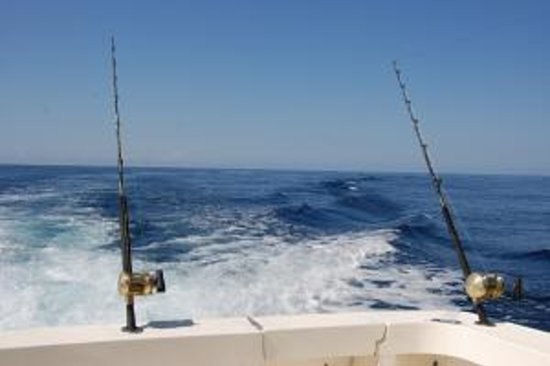 Hooked on Marlin Sportfishing Foto