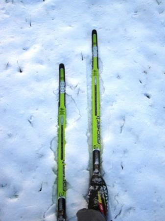 Jackson Ski Touring Foundation Bild
