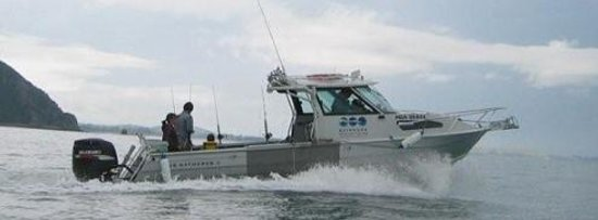 Kaikoura Marine Tours Photo