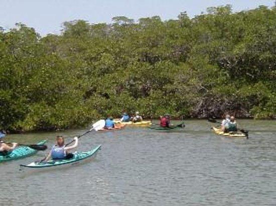 Adventure Sea Kayak Foto