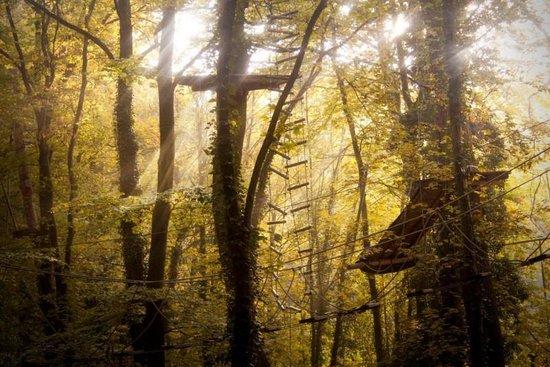 Kletterwald Darmstadt