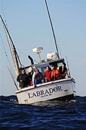 Labrador Fishing Charters Photo