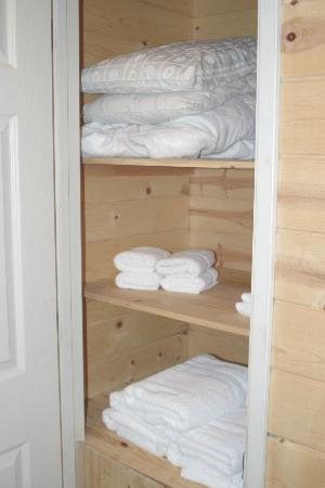 Yosemite Lakes RV Resort: Linen cabinet inside bathroom