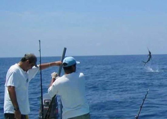 Best fishing trip we 39 ve had so far st lucia deep sea for Deep sea fishing charters near me