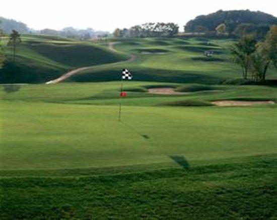 The Meadows Golf Club : The