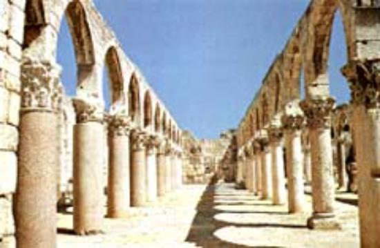 Cardo Maximus (Aanjar) Photo