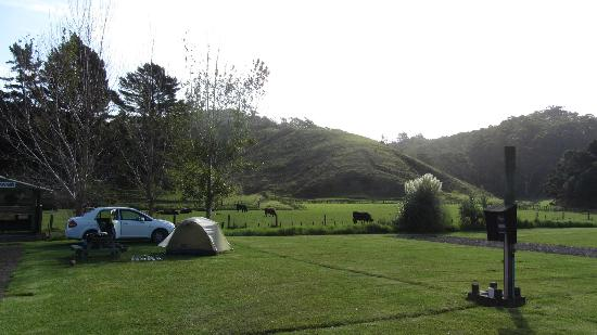 Tutukaka Holiday Park : Great camping!